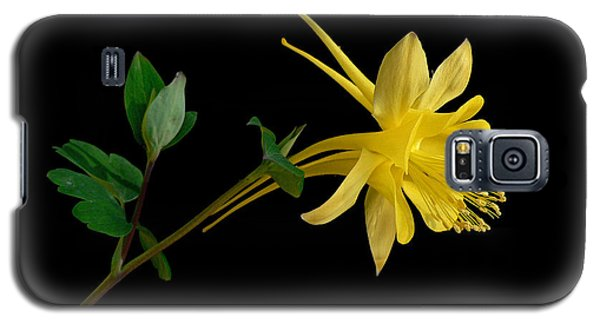 Golden Columbine Galaxy S5 Case