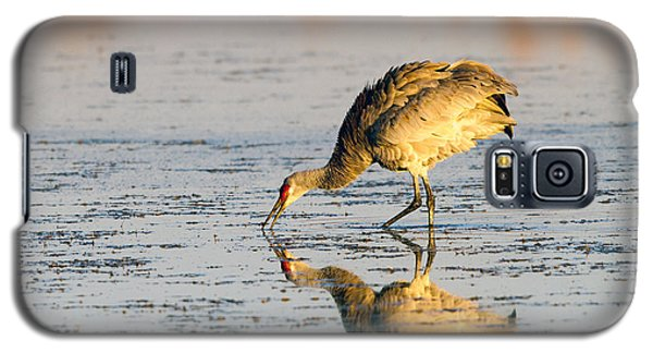 Golden Crane Reflections Galaxy S5 Case