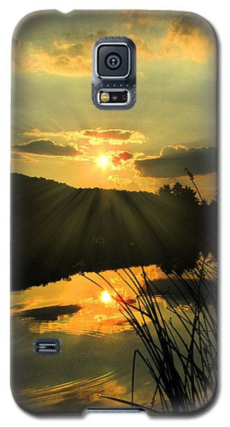 Golden Day Galaxy S5 Case by Cindy Haggerty