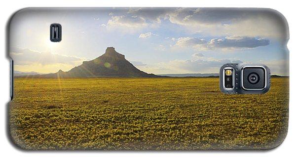 Golden Desert Galaxy S5 Case