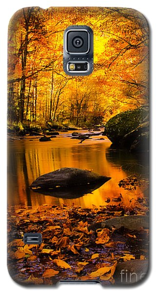 Galaxy S5 Case featuring the photograph Golden Dream by Geraldine DeBoer