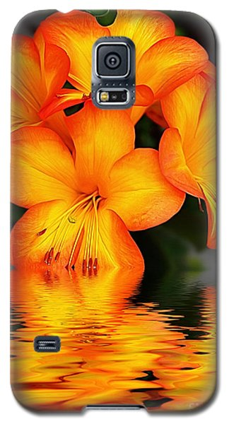 Golden Dreams Galaxy S5 Case by Kaye Menner