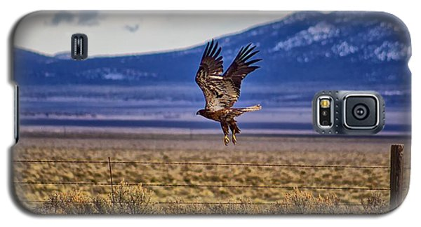 Galaxy S5 Case featuring the photograph Golden Eagle by Michael Rogers