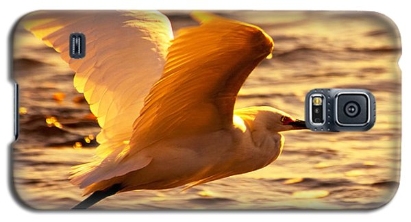 Golden Egret Bird Nature Fine Photography Yellow Orange Print  Galaxy S5 Case