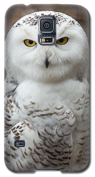 Golden Eye Galaxy S5 Case