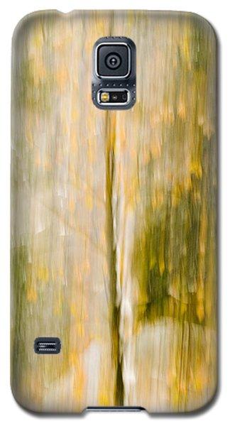Golden Falls  Galaxy S5 Case