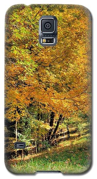 Golden Fenceline Galaxy S5 Case