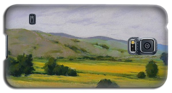 Golden Field II Galaxy S5 Case