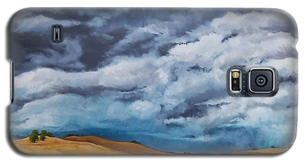 Golden Fields Galaxy S5 Case