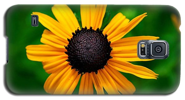 Galaxy S5 Case featuring the photograph Golden Flower by Matt Harang