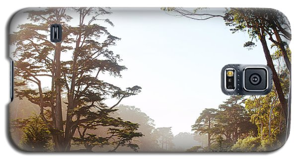 Golden Gate Park San Francisco Galaxy S5 Case by Artist and Photographer Laura Wrede