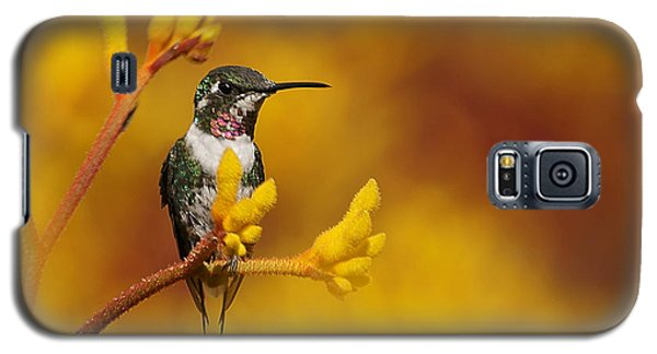 Galaxy S5 Case featuring the photograph Golden Glow by Blair Wainman