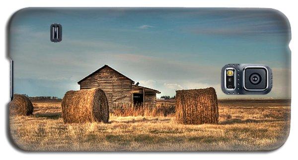 Golden Hay Galaxy S5 Case by Lisa Knechtel