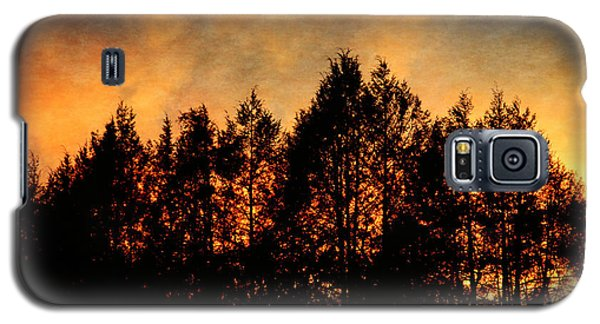 Golden Hours Galaxy S5 Case