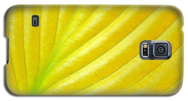 Golden Galaxy S5 Case by Kelly Nowak