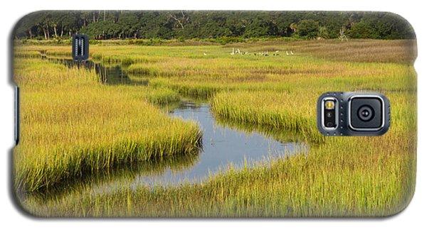 Golden Marsh Galaxy S5 Case by Patricia Schaefer