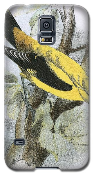 Golden Oriole Galaxy S5 Case