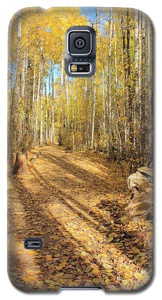 Golden Path Galaxy S5 Case