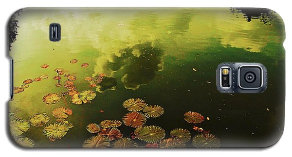 Golden Pond Galaxy S5 Case