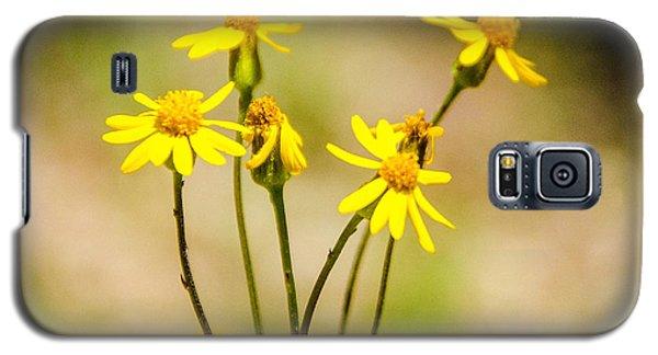 Golden Ragwort Galaxy S5 Case