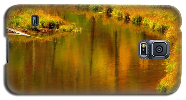 Galaxy S5 Case featuring the photograph Golden Reflections by Karen Shackles