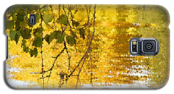 Galaxy S5 Case featuring the photograph Golden Reflections by Mariarosa Rockefeller