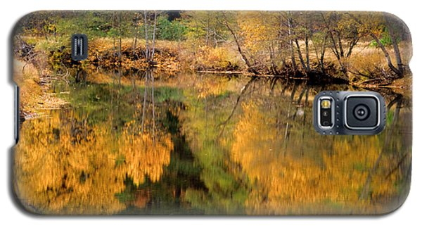 Golden Reflections Galaxy S5 Case by Terry Garvin