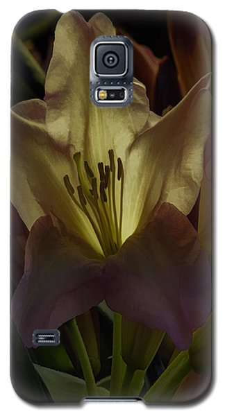 Golden Reserve Galaxy S5 Case by Jean OKeeffe Macro Abundance Art