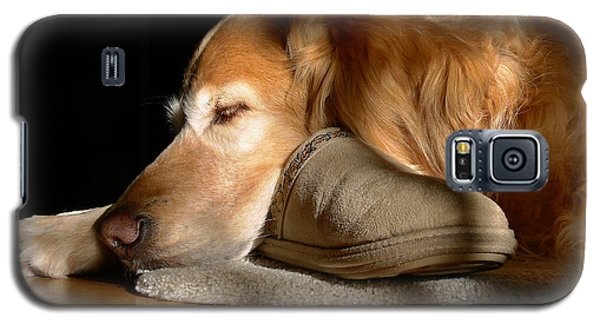 Golden Retriever Dog With Master's Slipper Galaxy S5 Case