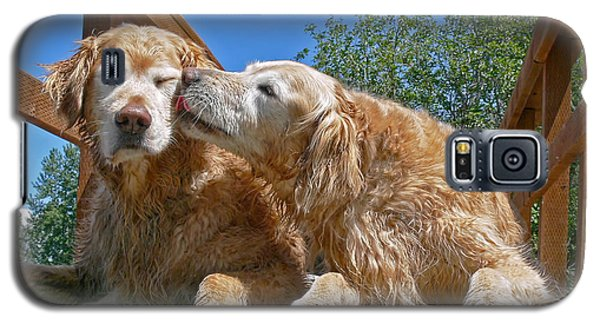 Golden Retriever Dogs The Kiss Galaxy S5 Case