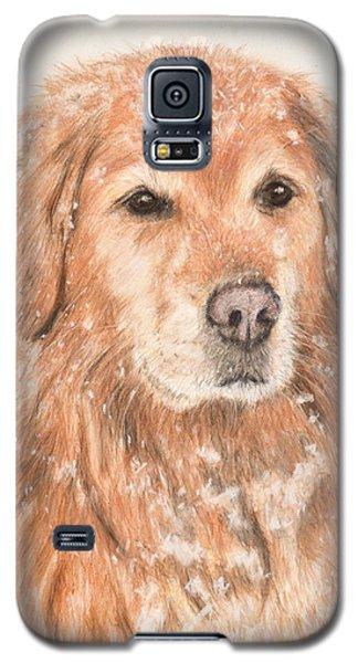 Golden Retriever In Snow Galaxy S5 Case