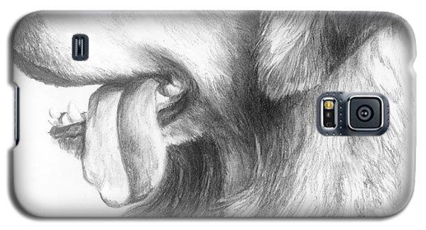 Golden Retriever Study Galaxy S5 Case