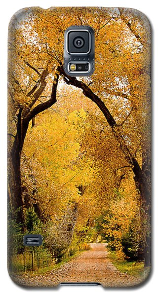 Galaxy S5 Case featuring the photograph Golden Roads by Steven Reed