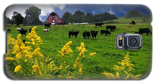Golden Rod Black Angus Cattle  Galaxy S5 Case by Randall Branham