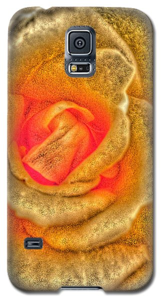 Golden Rose Galaxy S5 Case