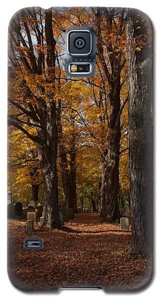 Galaxy S5 Case featuring the photograph Golden Rows Of Maples Guide The Way by Jeff Folger