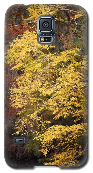 Golden Rust Galaxy S5 Case by Lana Trussell