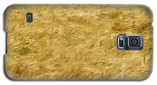 Golden Sea Galaxy S5 Case by Michael Dohnalek