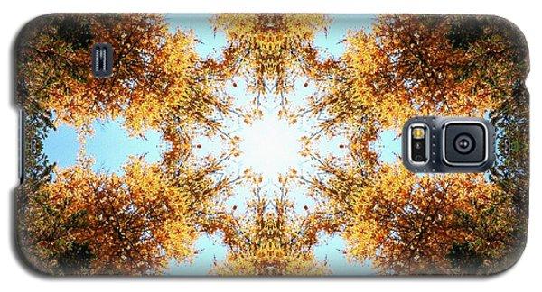 Golden Shimmer K2 Galaxy S5 Case