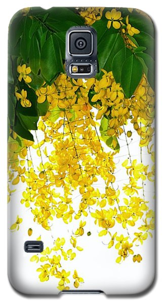 Golden Showers Flowers Galaxy S5 Case