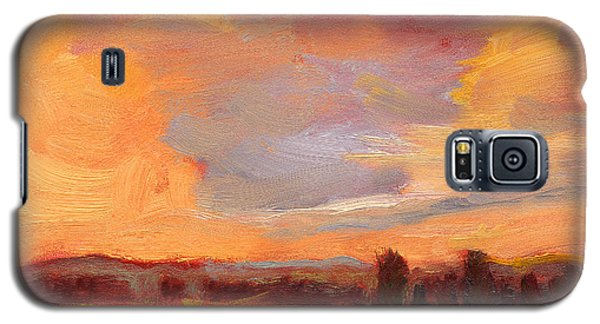 Golden Splendor Galaxy S5 Case
