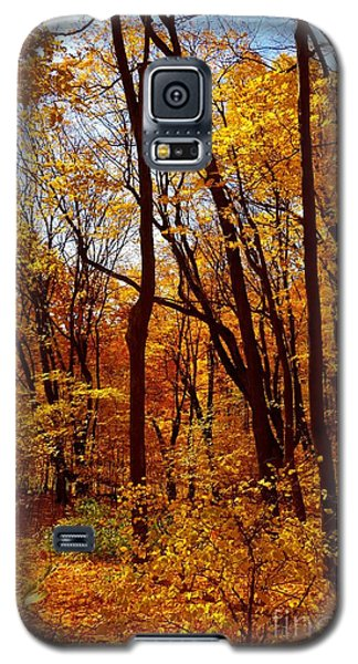 Golden Splendor Galaxy S5 Case