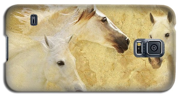 Golden Steeds Galaxy S5 Case