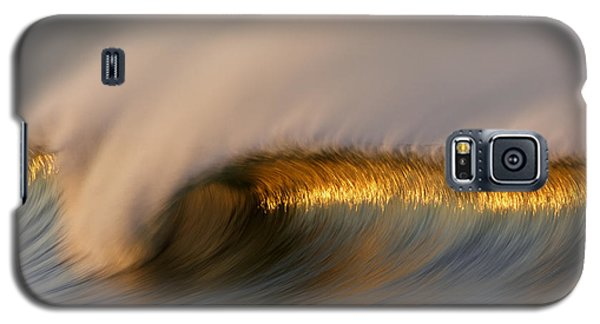 Galaxy S5 Case featuring the photograph Golden Stripe Mg_9094 by David Orias