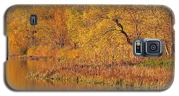 Golden Sunrise Galaxy S5 Case by Elizabeth Winter