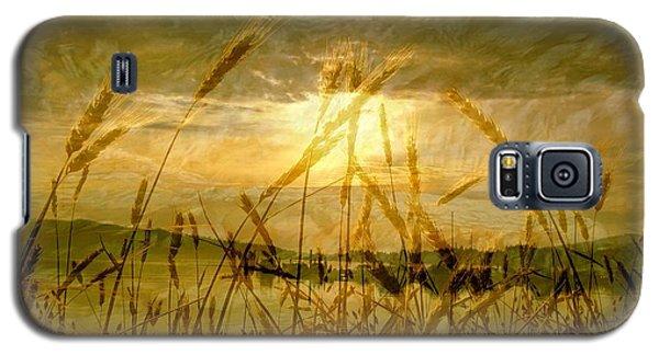 Golden Sunset Galaxy S5 Case