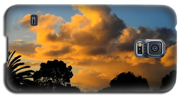 Golden Sunset Galaxy S5 Case