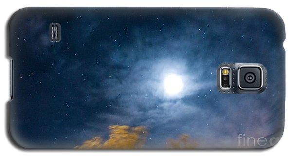 Golden Tree  Galaxy S5 Case by Angela J Wright