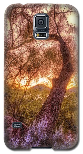 Golden Tree At The Quartz Mountains - Oklahoma Galaxy S5 Case