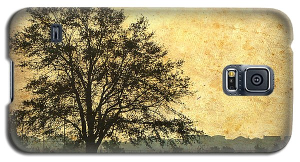 Galaxy S5 Case featuring the photograph Golden Tree by Phil Mancuso